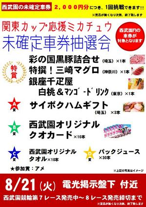 8.21ミカチュウ.JPG
