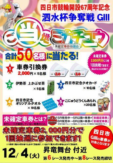 四日市ミカチュウ.JPG
